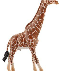 Girafa Schleich Macho