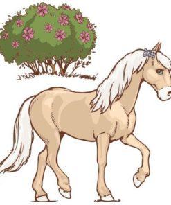 Horse Club Soulmates (Cavalo)